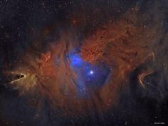 1 February 2017 | NGC 2264