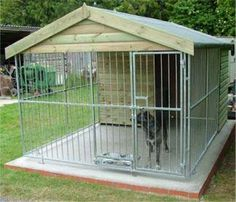 Single Kennel. Awesome.