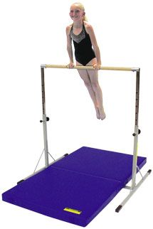 Gymnastics Mini Bar and mat set. (It's possible my kids want this more than a playground set.)