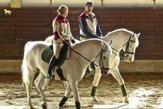 Dieser Beitrag erklärt, wie und mit welchen Übungen du es schaffst, die Losgelassenheit deines Pferdes zu erreichen und es korrekt über den Rücken zu reiten.