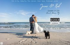 370 best Wedding Website Examples images on Pinterest
