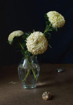 Сhrysanthemums by Elena Kolesneva on 500px