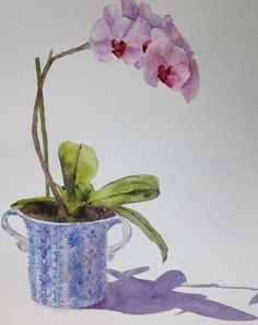Pink Orchid, watercolor painting by Claudia Díaz Hernández