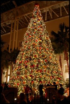 The Gaylord Opryland Hotel, Nashville, Tennessee ~ This grand hotel is amazing anytime during the year but, it is a must see at Christmas time! Noel Christmas, Christmas And New Year, All Things Christmas, Winter Christmas, Christmas Lights, Christmas Travel, Favorite Holiday, Holiday Fun, Holiday Decor