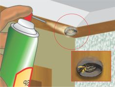 How to Get Rid of a Wasp's Nest via www.wikiHow.com