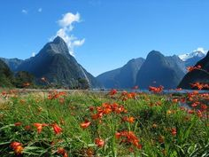 New Zealand, known for it's beautiful landscape.