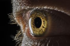 Christian Iris by Alx Murray on Eye Pictures, Animal Pictures, Beautiful Eyes Color, Eye Close Up, Human Eye, Eye Photography, Photo Reference, Cool Eyes, Iris