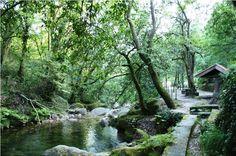 Parque de Campismo do Vidoeiro, Gerês