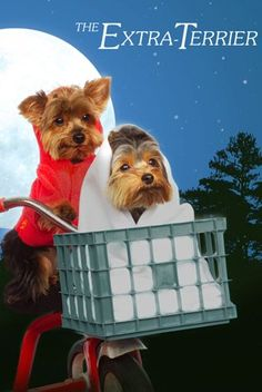 This could be Max and Tucker for Halloween :-)