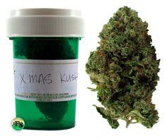 Justice Department Targets Medical Marijuana Despite Increasing Support For Legalization