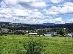 Unterhalb des #Kingenhofs in #Hinterzarten #Windeck