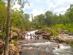 This is so much fun!  Buley Rockhole in Litchfield National Park, Northern Territory, Australia  Read all about it in the blog linked to this image