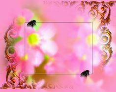background images for photo editing free download - Google Search
