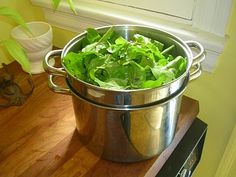 Lemons Love Beet Greens recipe - from protagonist handmade