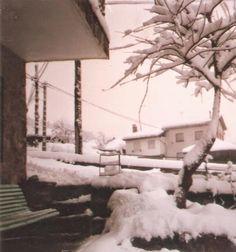 Caminos del viento: Nieva. Marcos Ana