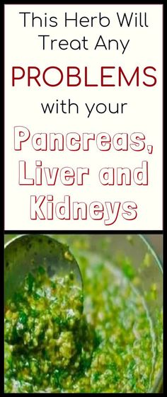 This Herb Will Treat Any Problems with Your Pancreas, Liver and Kidneys with A Single Blow #healthcare #homeremedies #herbwill #treatanyproblem #withyourpancreas #liverkidneys #withasingleblow