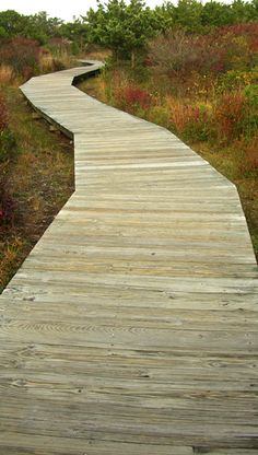 Beach & Nature Boardwalks