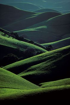 Spring on Mount Diablo, California (1982) by Galen Rowell