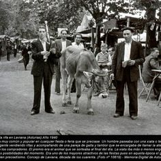 Asturias vintage 1118 - Obesia Horses, Animals, Costumes, Old Pictures, Boats, People, Animales, Animaux, Dress Up Clothes