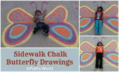 Chalk Butterfly drawings