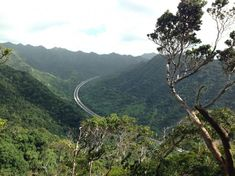 The 4.8-mile Aiea Loop trail is a popular hike along Halawa Valley in south central Oahu.