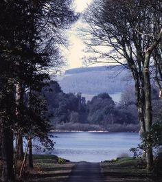 http://www.gardenvisit.com/assets/madge/castle_kennedy_lochinch_gardens_1088a_jpg/600x/castle_kennedy_lochinch_gardens_1088a_jpg_600x.jpg