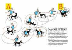 Navigreytion, by Richard Skipworth