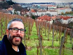 """(Sings)  """"Good King Wenceslas looked out On his vines of Riesling!""""  There really was a King Wenscelas, who planted his vineyard with Riesling and Pinot Noir in 908!  Merry Christmas!"""