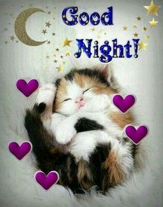 Good night sister and yours, sweet dreams 😋🌜💘🌛🌜☝🌛💖. Good Night Cat, Good Night Sister, Good Night Prayer, Good Night Sleep Tight, Cute Good Night, Good Night Friends, Good Night Everyone, Good Night Blessings, Good Night Sweet Dreams