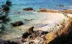 Sea Glass at Black Bay Beach in Bermuda