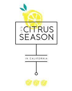 """It's Citrus Season in California"" print- designed by Emma Dime. The font is a semi-serif font called Banda, designed by Alexander Nedelev & Veronika Slavova"