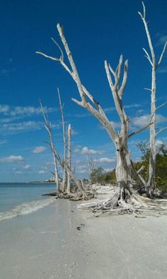 Lovers Key State Park is located between Fort Myers Beach and Bonita Beach, Lee County, Florida. A haven for wildlife; manatees, dolphins, bald eagles. #FL