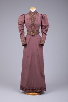 Dress 1893-1893 The Goldstein Museum of Design