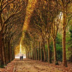 http://ift.tt/2jr6Zkd #Nature_breathtaking #Photos Promenade by superchinois801