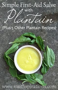 Simple First-Aid Salve with Plantain (Plus 5 Other Plantain Recipes) This is a great item to have in your natural medicine cabinet and is so simple to make! Cold Home Remedies, Natural Health Remedies, Natural Cures, Natural Healing, Herbal Remedies, Natural Foods, Natural Oil, Natural Products, Holistic Healing