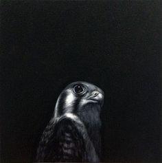 Shelley Reed-'Kestral'-Sears-Peyton Gallery