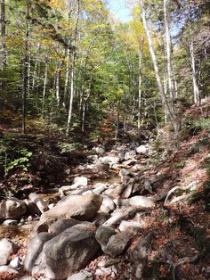 Flume Gorge hike, White Mountains, NH