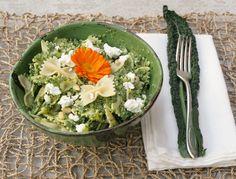 """Les stars américaines se l'arrachent et ses vertus ont conquis plus d'un gourmand... Le kale (prononcé """"kayle"""") existait autrefois en France sous le nom de chou-plume. Ce genre de chou frisé revient aujourd'hui grâce à des passionnés comme Kristen Beddard qui a créé le """"Kale Project"""" pour réintroduire dans nos assiettes ce légume oublié. Cette américaine installée en France depuis 3 ans nous dit tout sur le kale !"""
