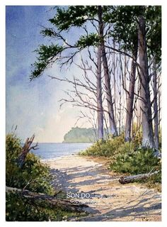 Watercolor landscape forest beach water
