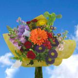 European Mixed Bouquets 2 Bunches (12 stems) (OC) [Include Flower Food]