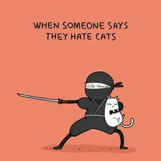 Don't trust anyone who hates cats. Here I'm talking about someone who hates them, as opposed to dislike or fear. People who hate cats very often have a pathological hatred of women.