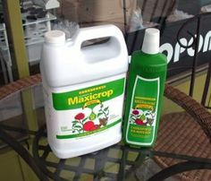 Maxicrop Original Liquified Seaweed: 1 Gallon by Maxicrop. $32.84. Maxicrop Original 0-0-1 1 Gallon. For trees, flowers, lawns, fruits & vegetables. Can be used for soaking seeds & bulbs before planting, ideal for houseplants, ideal for seedlings & cuttings.  Derived from seaweed