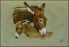 Donkeys original watercolor painting by Juan Bosco