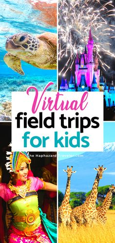 Teaching Activities, Teaching Kids, Activities For Kids, Virtual Travel, Virtual Tour, Virtual Field Trips, Tot School, Home Learning, Business For Kids