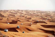 Dubai's desert