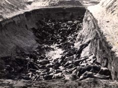 Bergen Belsen, Germany, Corpses in a mass grave, after liberation.