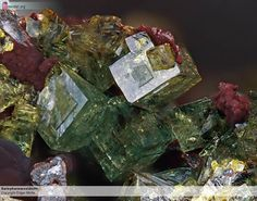 Bariopharmacosiderite Stage with a beautiful green Bariopharmacosiderite  The piece is from the former Clara collection of my late acquaintance, the collector Helmut Zimmer.  Field of view 4,5 mm Collection and Photo: Edgar Müller  Copyright Edgar Müller