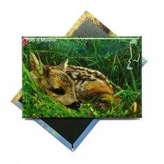 Custom #magnet #StelvioNaturalPark #madeinsadesign
