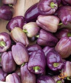 Sweet Bell Peppers, Stuffed Sweet Peppers, Fresh Vegetables, Fruits And Veggies, Bountiful Harvest, Fiery Red, Garden Features, Dream Garden