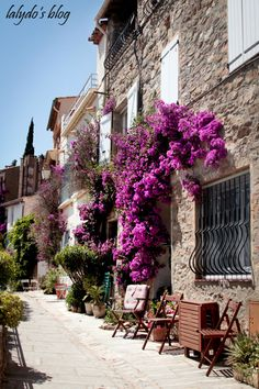Grimaud in the south of France by Lalydo's blog